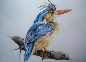 Bird drawing by JuliaBadeeva