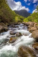 Iao Waters by AndrewShoemaker