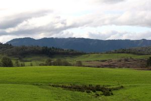 Green fields and hills by jvmediadesign