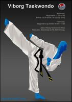 Taekwondo Poster by Captainfusion