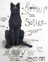 Solice REF 2011 by kuiwi