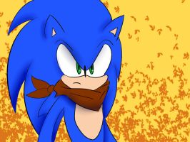 SANIC (Sonic Boom) by pikashoe90