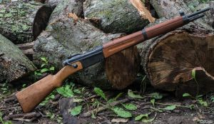 A Frenchman in the Woods - MAS 36 by spaxspore