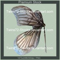 386-Twins72-Stocks by Twins72-Stocks