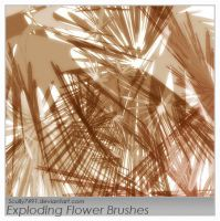 Exploding Flower brushes by Scully7491