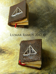 .:Deathly Hallows Tiny Books:. by NerwenNenharma
