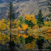 Autumn Reflections by La-Vita-a-Bella