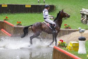 3DE Cross Country Water Obstacle Series X/25 by LuDa-Stock