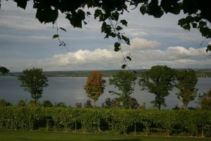Cayuga Lake, NY by iamkjelstrup