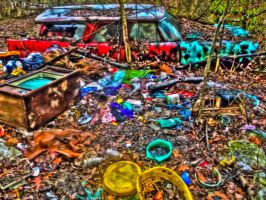 Cluttered Yard -HDR- by tripptaylor