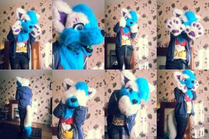 My first fursuit partial by LittleRock3DD