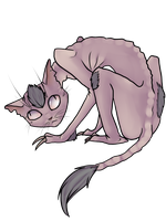 Hey, Jayfeather by ninetail-fox