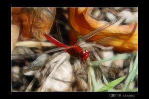 Red Dragonfly with Fractalius by tsabitah
