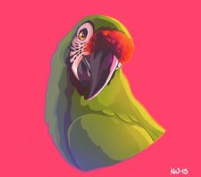 I can't stop drawing this darn bird by Techta