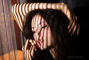 I'm Feeling Like a Harp in The Sun by borda