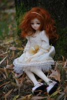 Autumn is coming by aniszyma