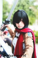 wild Mikasa want to fight! by MartinaNSC