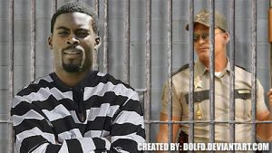 Michael Vick Is A Scumbag by DolfD