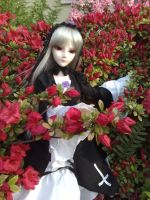 Suigintou BJD - Hedged with Flowers by AngyValentine