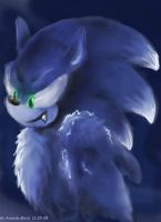 Sonic The Werehog by wolfs-rain-amanda
