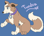 *~*Tundra*~* by maikoforev5674