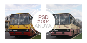 PSD#004 by Anuya
