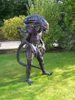 Abby T Alien-Xeno Suit by Rex-equinox
