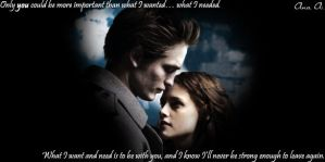 Edward and Bella by linkinparkfan4ever