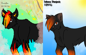 1.5 Years of Improvement by StarnSecret