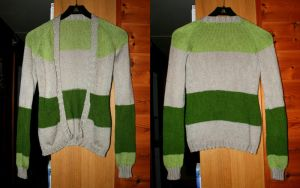 Friendship colored cardigan - COMMISSION by KnitLizzy