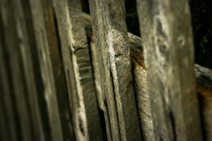 Fence Line by EagleNebulosity