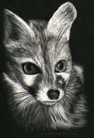 ScratchBoard by FlyingPony