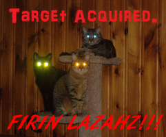 Target Acquired :3 by Moonlight2095