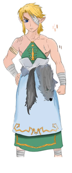 Link Twilight Princess Casual Clothes by HenriBaz