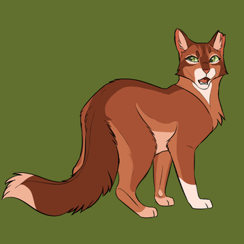 Squirrelflight by ClimbToTheStars
