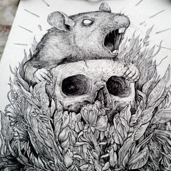 Rat by TimurKhabirov