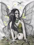 Firefly Faery by PhilipHarvey