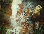 Tiger and Waterfall by kimrhodes