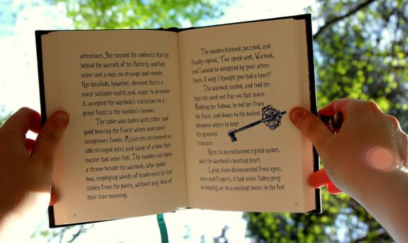 Tales of Beedle the Bard by AngelElira