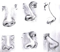 Six Noses (1) by MauricioKanno