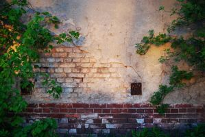 The wall by Uncka