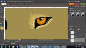 Project Part 1: Lion eye by Lufca