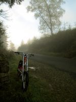 misty dale park 5 by harrietbaxter