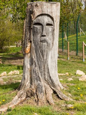 Tree Face 2 by mrscats