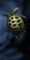Turtle in SPACE by CHERDAK