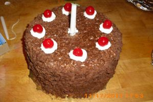 portal cake 1 by toastles