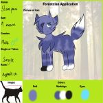 Stonepaw Ref Sheet by StarsongDstarwatcher
