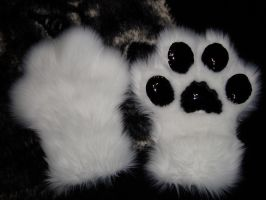 experimental paws by Nevask