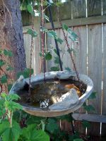 Bird Bath 1 by thiselectricheart