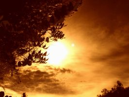 Nature_sky_orange sunset by Aimelle-Stock